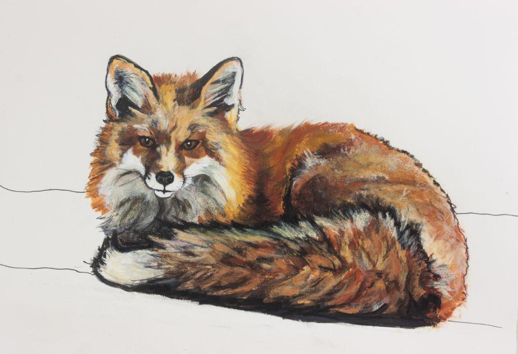 Red Fox Mixed Media Drawing on Paper Allyson Kramer
